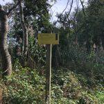 Wandel route door het bos